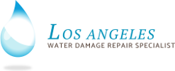 Water Damage Los Angeles 411 logo